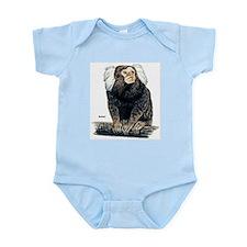 Marmoset Monkey Infant Creeper