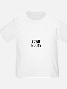 Bowie Rocks T