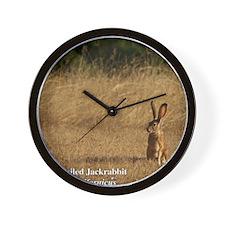 Jackrabbit Sitting Wall Clock