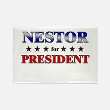 NESTOR for president Rectangle Magnet
