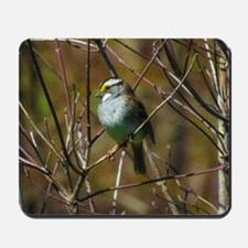 white throated sparrow Mousepad