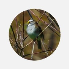 "white throated sparrow 3.5"" Button (100 pack)"