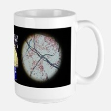 Soil Microbes Know When To B. Cereus Mugs