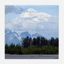 Unique Mount mckinley Tile Coaster