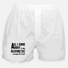 All I care about is my Burmese Boxer Shorts