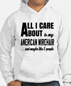 All I care about is my American Hoodie