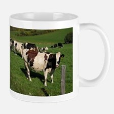 Berkshire County Cows Mug