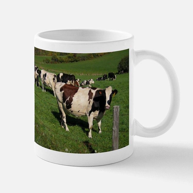 Berkshire County Cows Mug