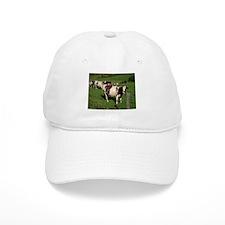 Berkshire County Cows Baseball Cap
