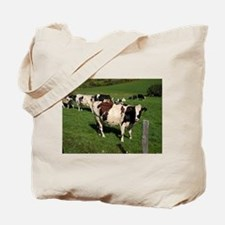 Berkshires Cows Tote Bag