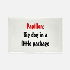 Papillon: Big dog in a little package Rectangle Ma