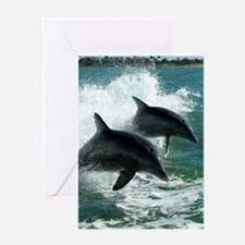 Dolphins Greeting Cards