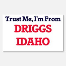 Trust Me, I'm from Driggs Idaho Decal