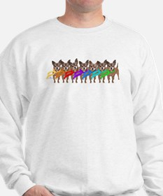 Chihuahua Winter Rainbow Sweater