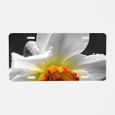 Daffodil Umbrella Aluminum License Plate