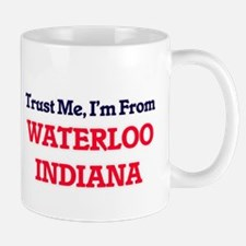 Trust Me, I'm from Waterloo Indiana Mugs