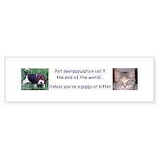 Pet overpopulation bumper sticker w/ puppy & kitty