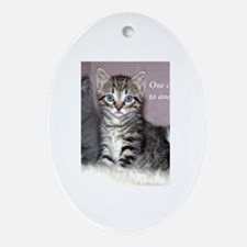 One Cat Leads to Another Oval Ornament