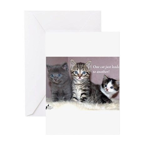 One Cat Leads to Another Greeting Card
