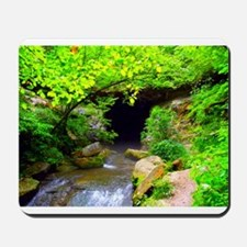 Donaldson Cave - Spring Mill State Park, Indiana M
