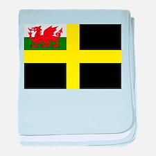 Flag of Saint David baby blanket