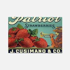 Vintage Fruit Crate Label Magnets