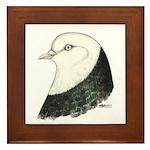 West of England Pigeon Framed Tile