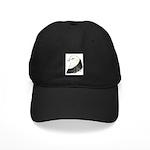 West of England Pigeon Black Cap