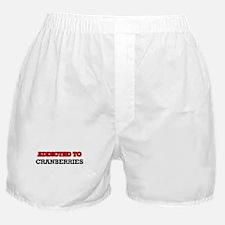 Adamiak Coat of Arms (Family Crest) Boxer Shorts