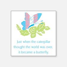 Transgender Butterfly Sticker