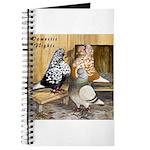 Domestic Flights Three Journal
