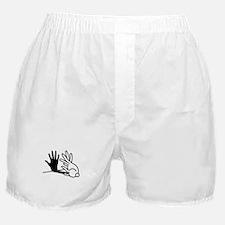 Funny Shadow Boxer Shorts