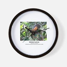 RUFOUS FANTAIL - Rhipidura rufifrona - Wall Clock