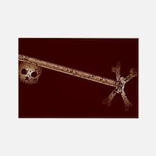 Very Old Skeleton Key Magnets