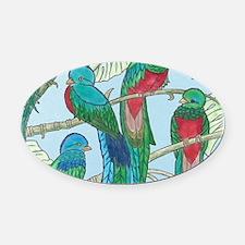 Quetzal Birds Watercolor Oval Car Magnet