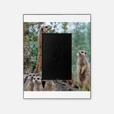 Meerkat010 Picture Frame