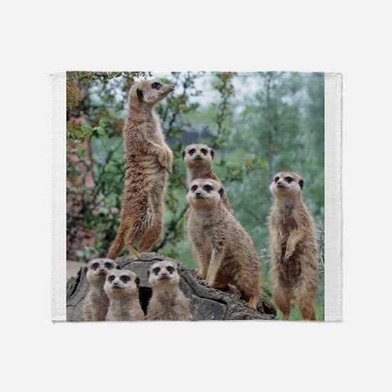 Meerkat010 Throw Blanket