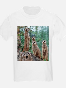 Meerkat010 T-Shirt