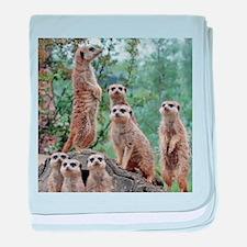 Meerkat010 baby blanket