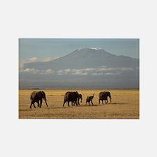 Cute Kilimanjaro Rectangle Magnet
