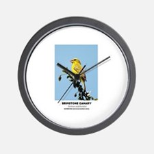 EXOTIC BIRDS - BRIMSTONE CANARY - Serin Wall Clock