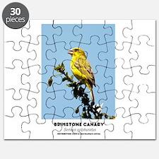 EXOTIC BIRDS - BRIMSTONE CANARY - Serinus s Puzzle