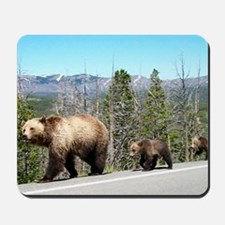 Bears in Yellowstone Park Mama and Baby Mousepad
