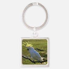 Yellow Sulphur-Crested Cockatoo fr Square Keychain