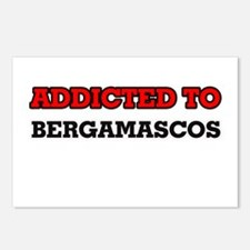 Addicted to Bergamascos Postcards (Package of 8)