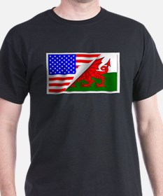 United States and welsh Flags Combined T-Shirt