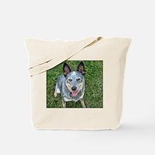 Blue Heeler Tote Bag