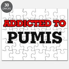 Addicted to Pumis Puzzle