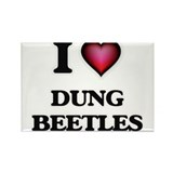 Dung beetle Magnets