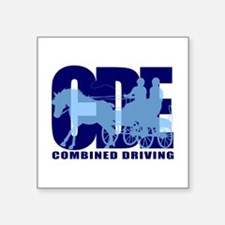 Combined Driving Sticker